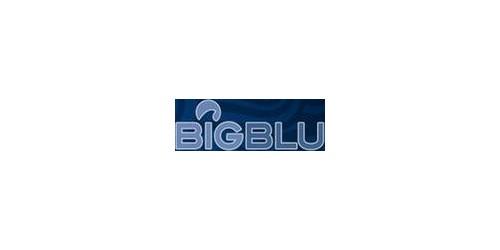 Фильтры бытовые Big Blu